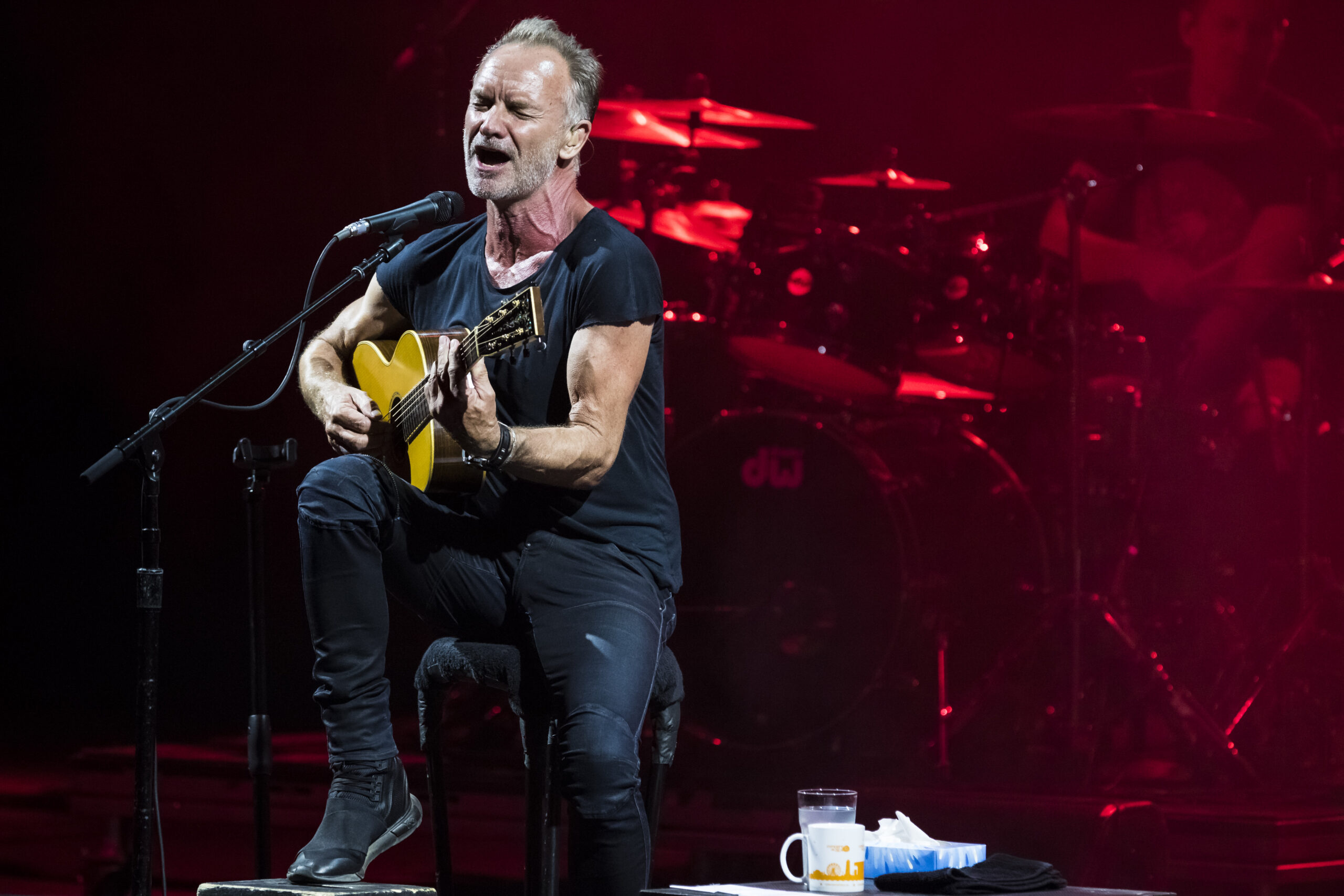 Sting at concert band photography