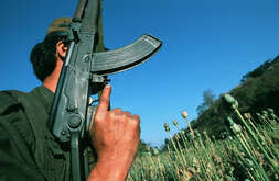A local guerilla soldier makes his way through a poppy field near the Jew Kaw village.