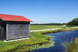 Cranberry bog pump house and irrigation system.